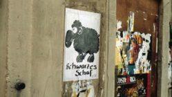 Schwarzes Schaf - Foto: Lothar Lange