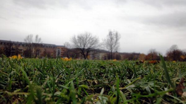 Ganz schön leer im Herbst, der Alaunplatz
