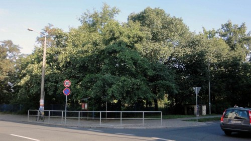 Südost-Ecke Alaunplatz