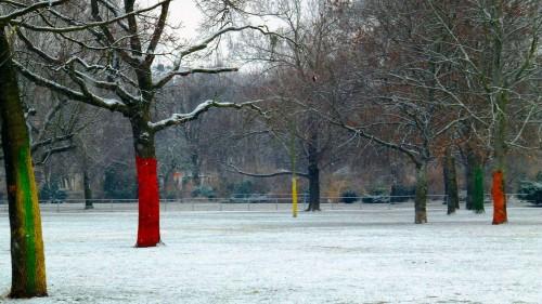 Die Markierungen an den Bäumen erleichtern das Eishockey