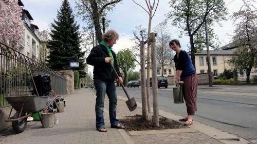 Die Grünen Torsten Schulze und Elke Zimmermann pflanzen einen Baum.