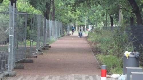 Die Büsche auf der rechten Seite dienen als Sichtschutz für die Kita.