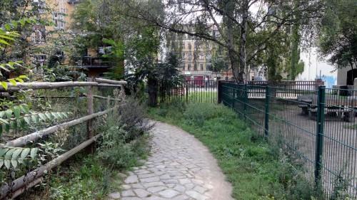 Kletterwald statt Neustadt-Dschungel