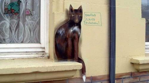 Dresden zukatzen, gesehen an der Gutschmidstraße.