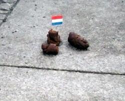 Hundekot - auf den Straßen wird er immer seltener