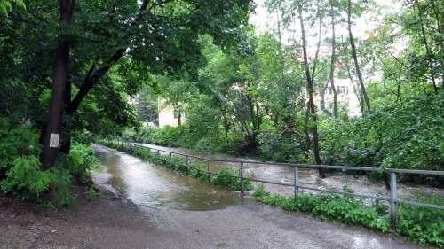 Der Waldweg entlang der Prießnitz in die Heide ist nur noch mit hohen Gummistiefeln begehbar.