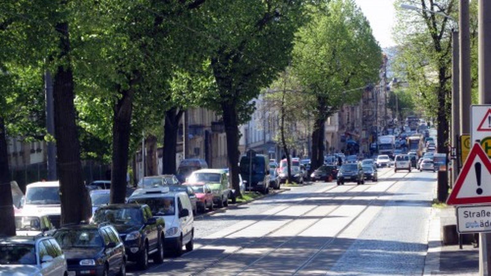 Nördlich des Bischofsweges müssen die Bäume links weichen, dafür gibt es Ersatzpflanzungen