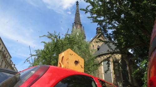Platz mit Aussicht - das Völkchen hatte sich im Schatten der Martin-Luther-Kirche angesiedelt.