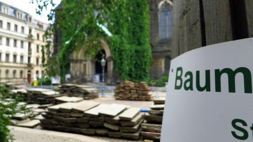 Einige Bäume wurden beschriftet, alle erhielten Schutzmäntel.