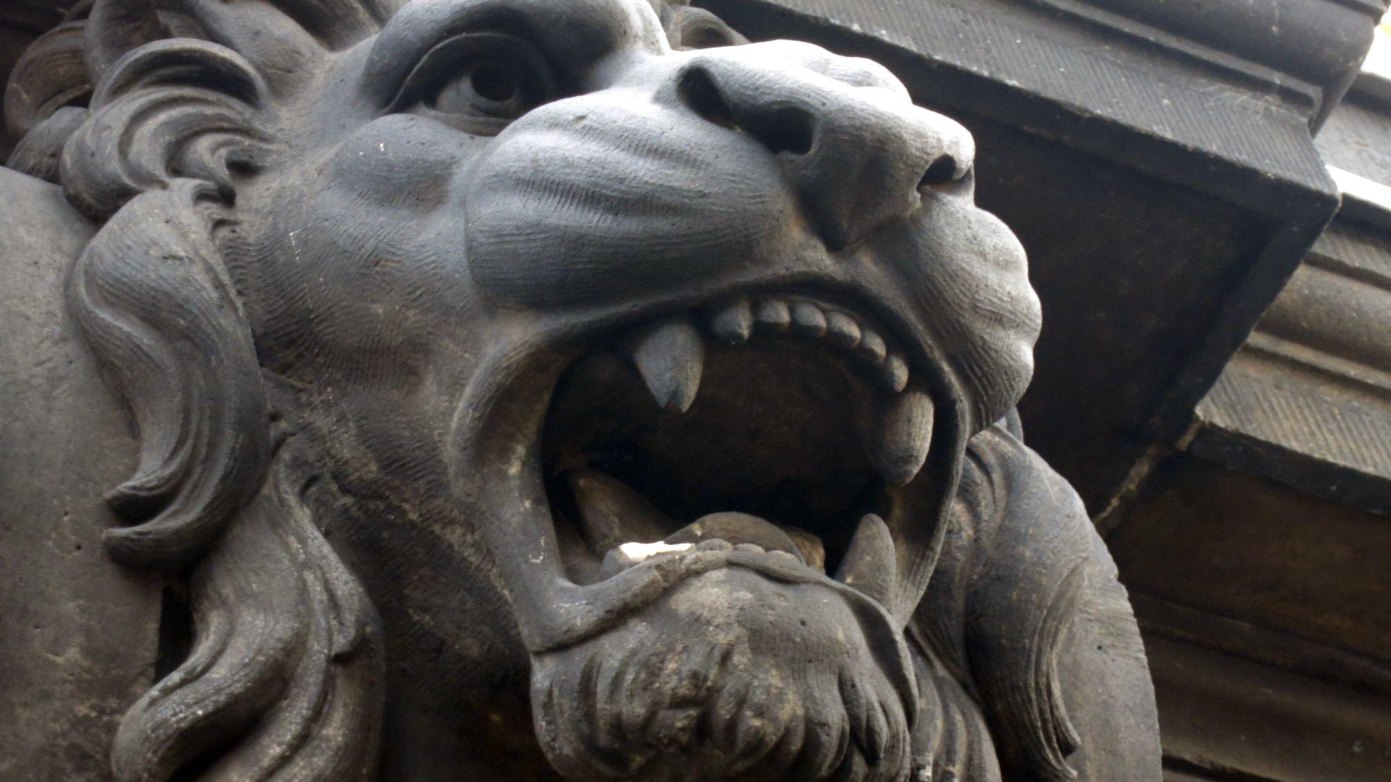 Löwenzahn am Goldenen Reiter abgebrochen