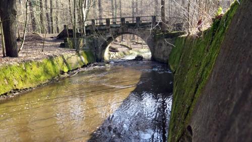 Bläschenbildung in der Prießnitz an der Brücke zum Neuen Brückenweg