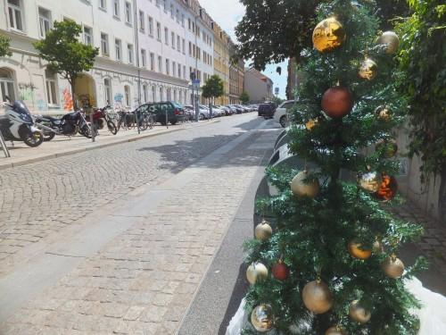 Weihnachtsbaum auf der Sebnitzer