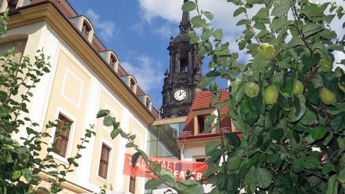 Mit Birnenbäumen im Garten - das Societaetstheater