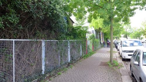 Um das Grundstück hinter den Hecken geht es: Dr.-Friedrich-Wolf-Straße