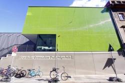 Die grüne Halle der Dreikönigschule an der Alaunstraße. Foto: Youssef Safwan