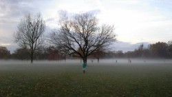 Macht auch im Nebel eine gute Figur: Der Alaunplatz