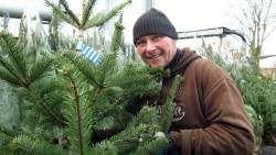 Weihnachtsbäume im Alten Heizhaus