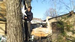 Gitarrenbauer Jost von Huene schmückt schon mal den Baum.