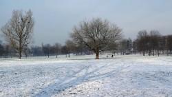 Der Alaunplatz zeigt sich winterlich schick. Doch die Ski-Flieger wollen noch nicht.