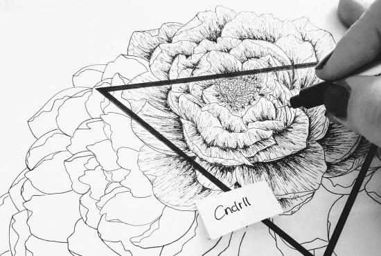 Filigrane Zeichnungen