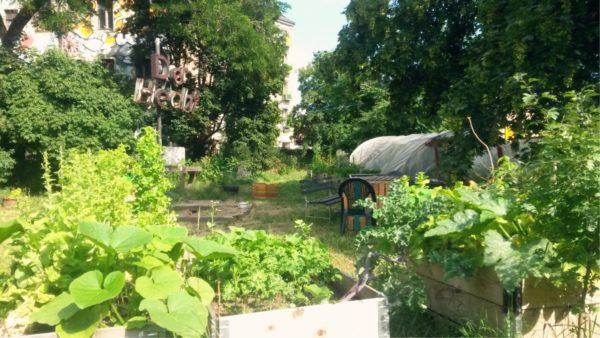 """Der Gemeinschaftsgarten """"Hechtgrün"""" am Bischofsplatz wird Freitag Abend zum Tanzlokal"""
