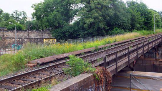 Das feuchtfröhliche Sommerwetter verwandelt die stillgelegte und noch nicht abgerissene Bahnbrücke über der Stauffenbergallee in eine Grünbrücke.