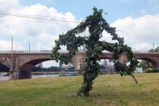 Das Unwetter brachte den Samen für ganz neue Bäume mit.