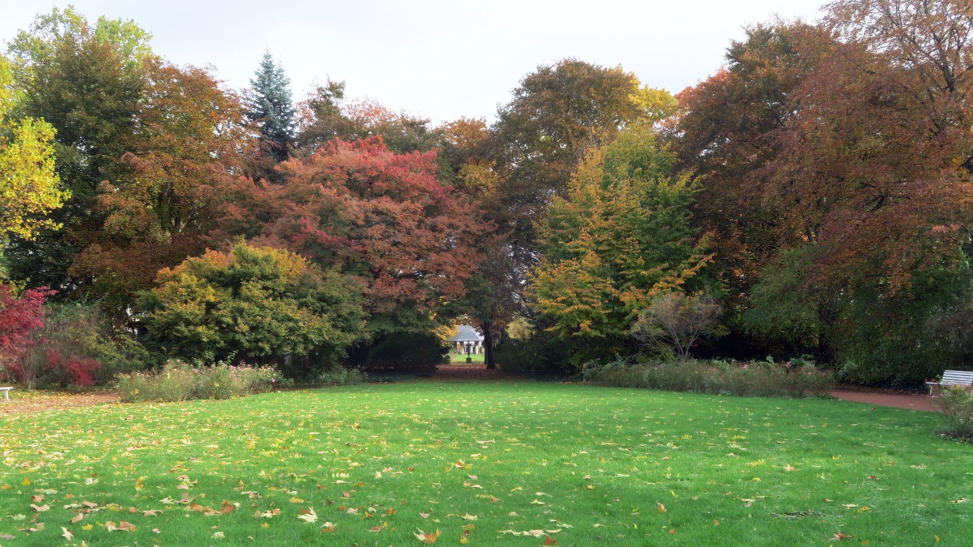 So bunt malt nur der Herbst.