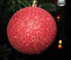 Rot kontrastiert gut mit dem Nadelgrün.