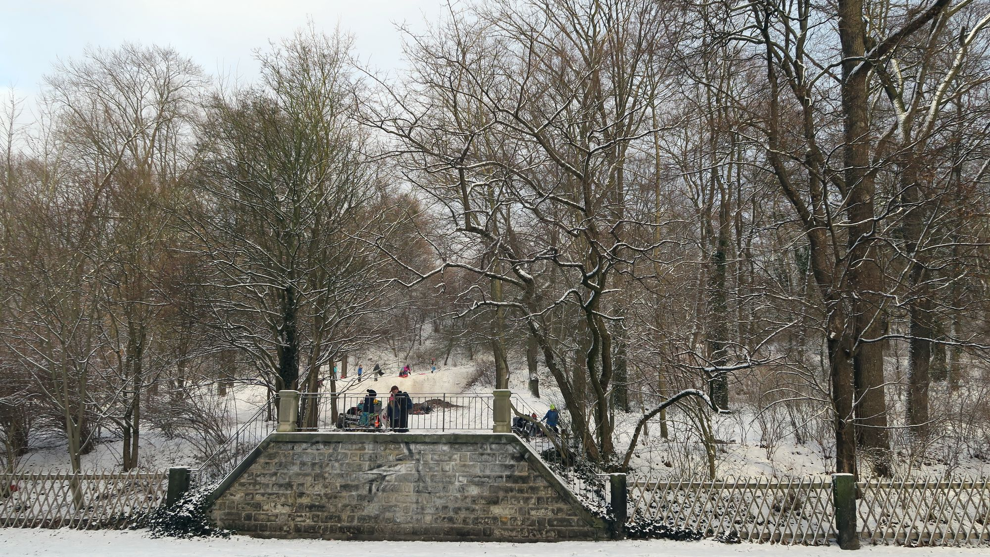Ab Montag werden im Hechtpark Bäume gefällt.