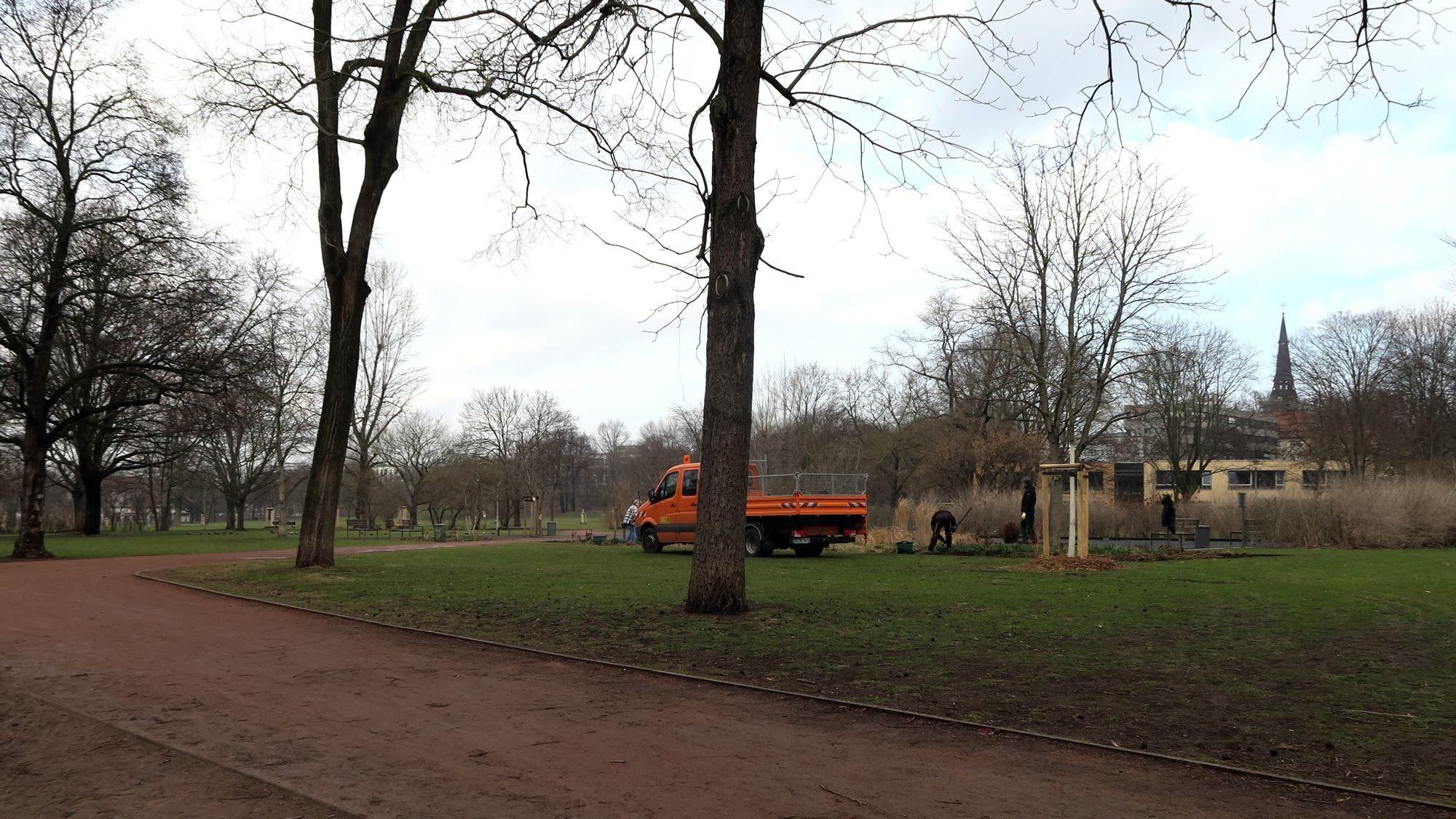 An der Ostseite am Bouleplatz wurden gestern die Büsche und Hecken gepflegt.