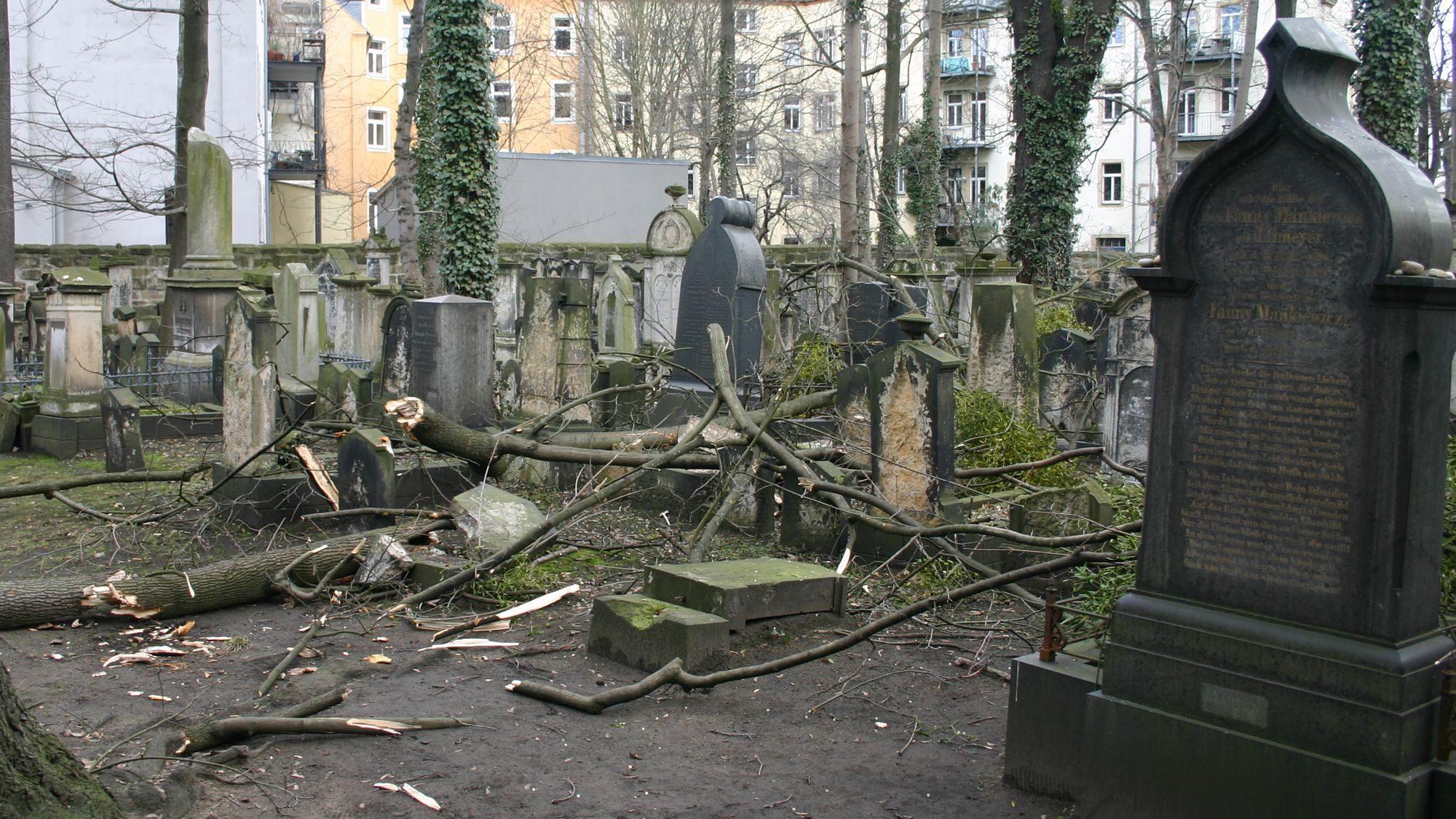 Durch herunterstürzende Äste wurden bereits Grabplatten beschädigt. (Foto: Hatikva e.V.)