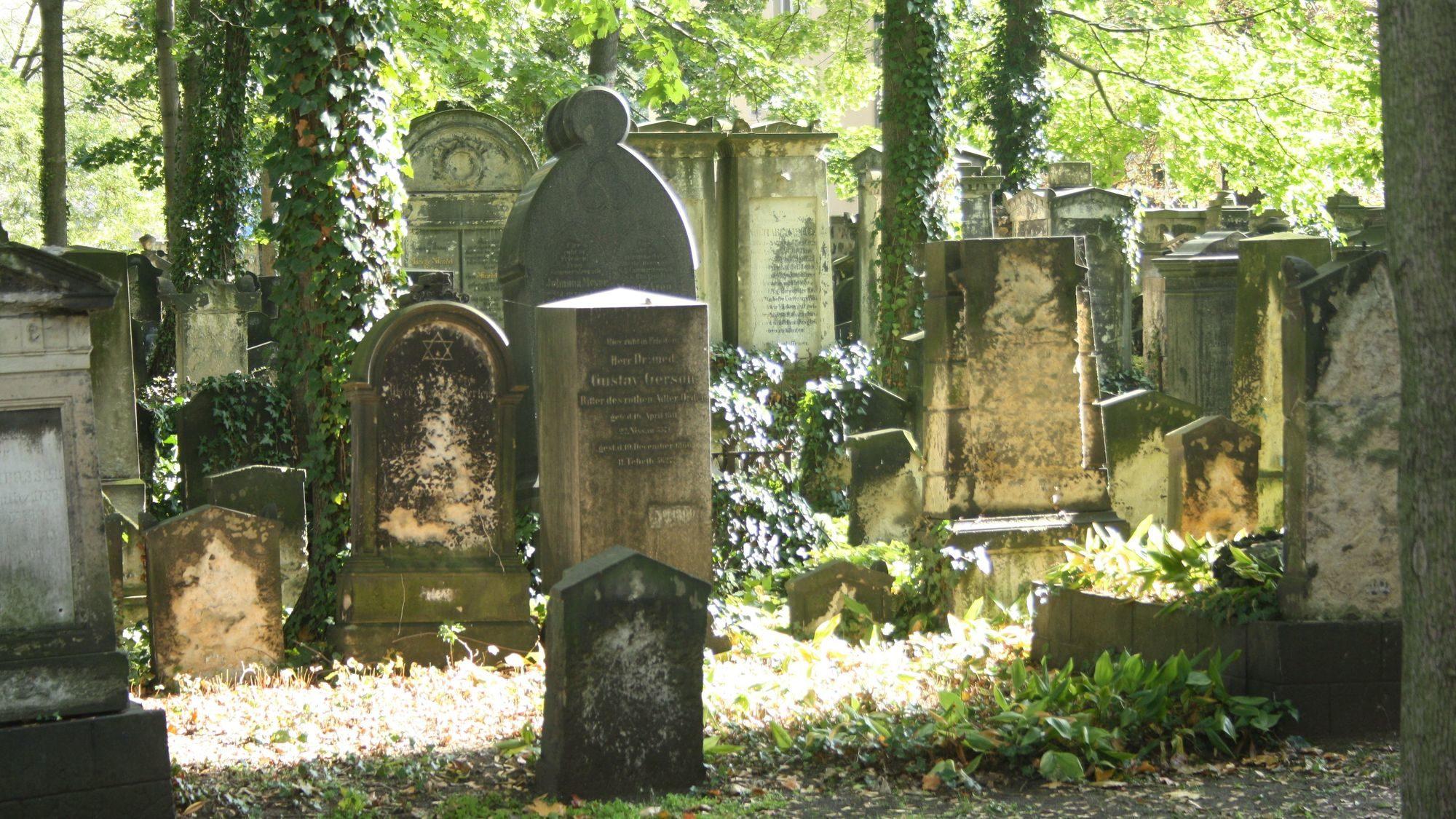 Wenn der Baum gefällt wird, können auch wieder Führungen über den Friedhof stattfinden.