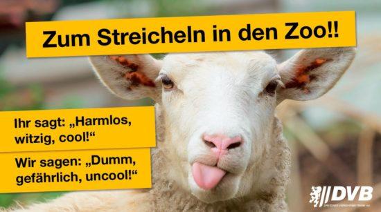 Streicheln? Bitte im Zoo. Plakat: DVB
