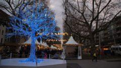 Der Blaue Baum, Wahrzeichen des Augustusmarktes.