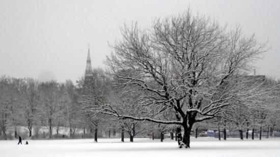 Winterlicher Alaunplatz - Foto: Archiv 2010