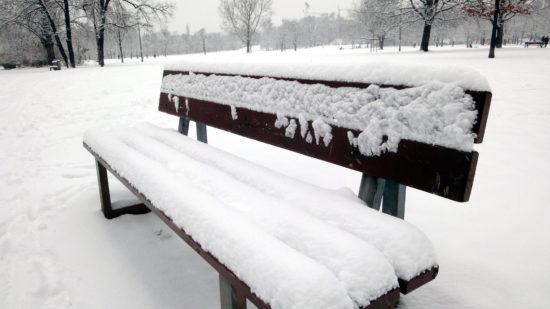 Winterliche Parkpank am Alaunplatz - Foto: Archiv 2010