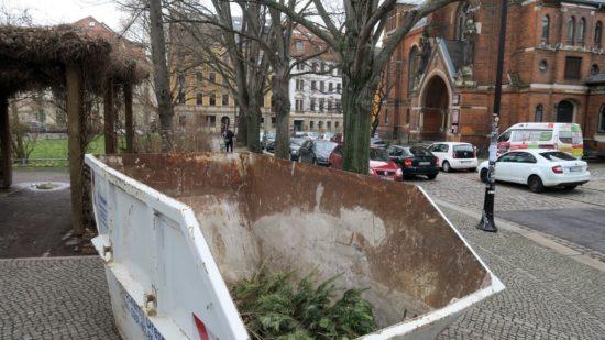 Container für die Bäumchen im Hecht-Viertel am Königsbrücker Platz.