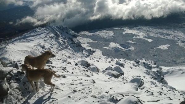 Thomas Haase & Freunde präsentieren den stolzesten Berg Siziliens - den Ätna - Foto: Marcus Oertel