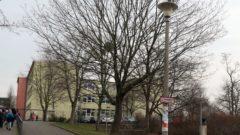 Rosengartenschule an der Löwenstraße