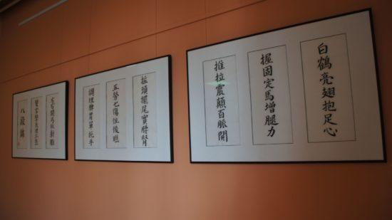 """Die 8 Brokate (""""Die acht edle Übungen"""") geschrieben mit Tusche: Tanz des Pinsels auf dem Papier."""