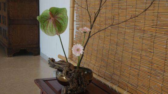Die Kunst des Blumensteckens, Kado, ist ein Teilbereich des Tai Chi.