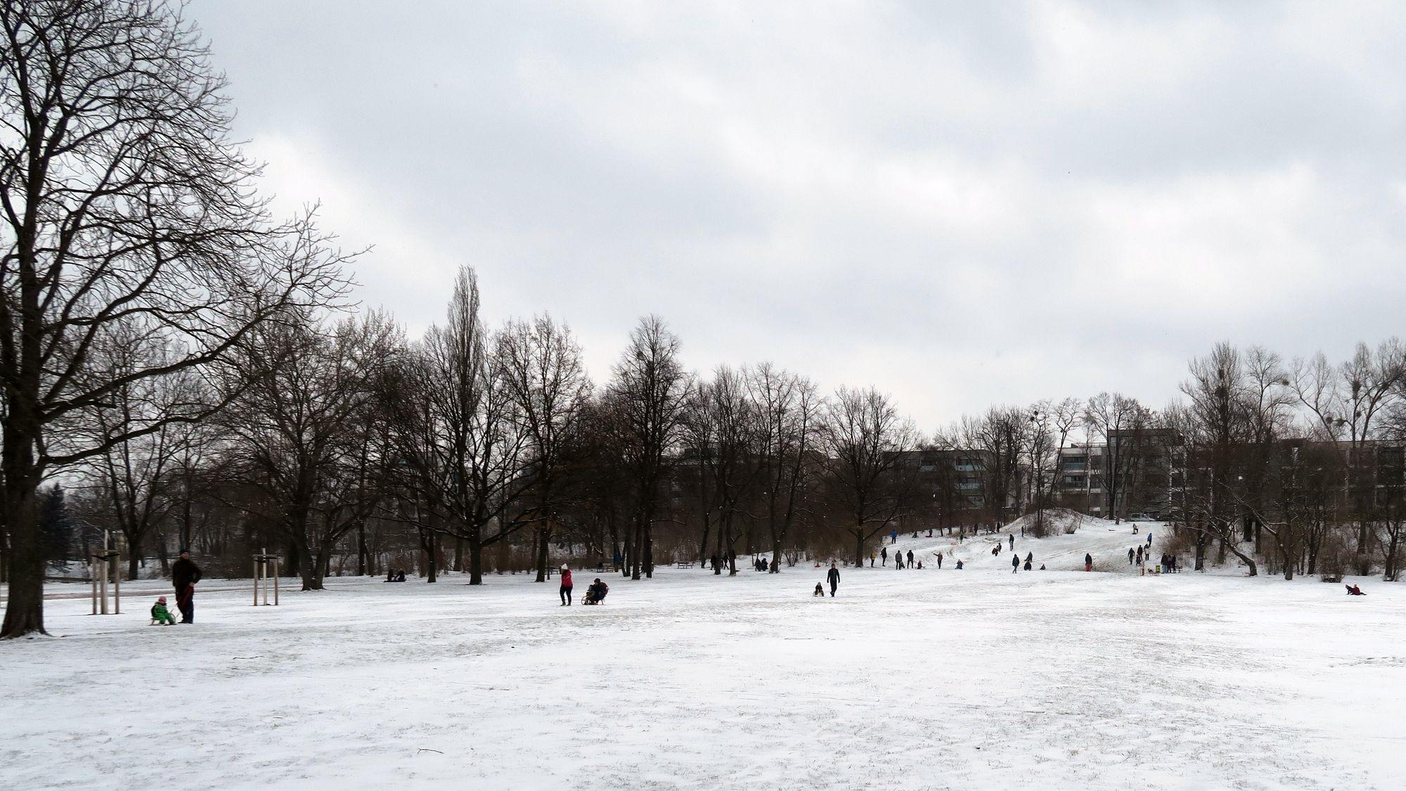 Dünne Pulverschneeschicht auf dem Alaunplatz