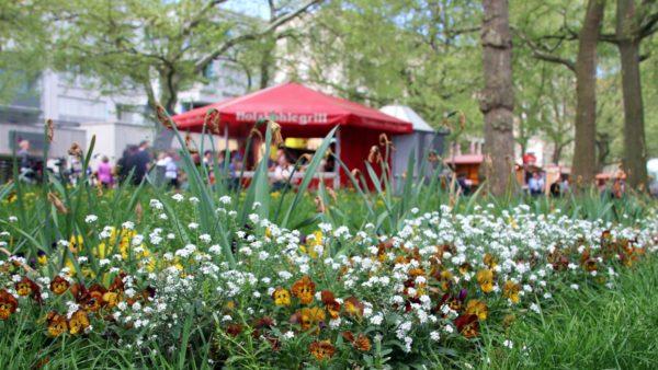 Frühling auf der Hauptstraße