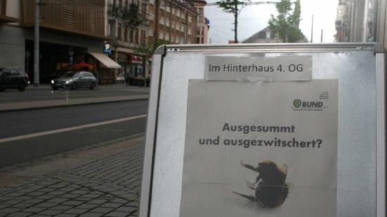 Wo summt es noch in der Bautzner Straße?