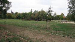 Der Russensportplatz - momentan vor allem eine große Wiese