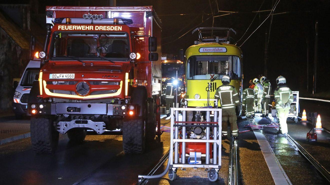 Die Feuerwehr half bei der Bergung - Foto: Roland Halkasch