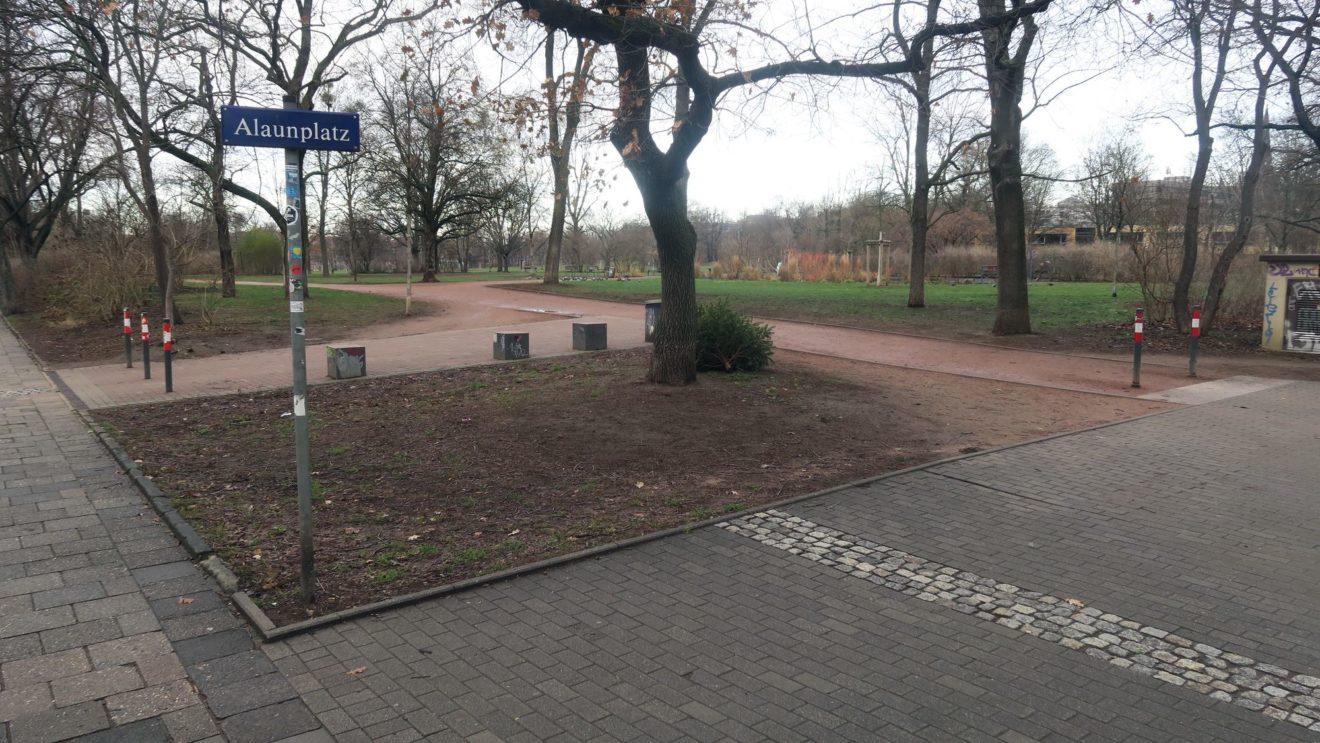 Weihnachtsbaum-Sammelstelle am Alaunplatz