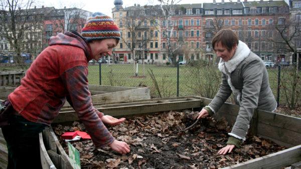 Eigentlich gärtnert Julia Mertens (links) im Kleinen Garten Strehlen und Anna Melnychuk im Bönischgarten Johannstadt.