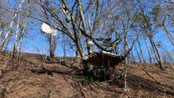 Mit viel Engagement wurde dieses Baumhaus angefertigt.